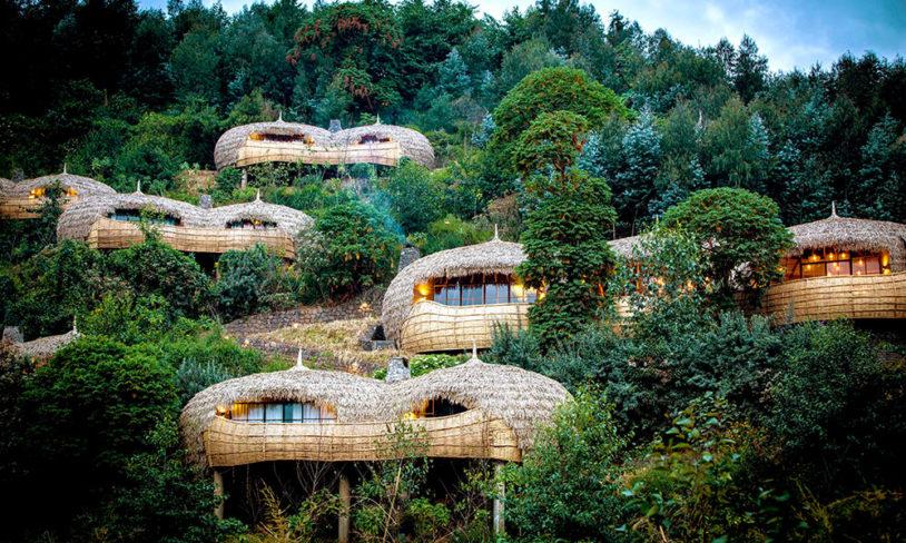 7. Bisate Lodge