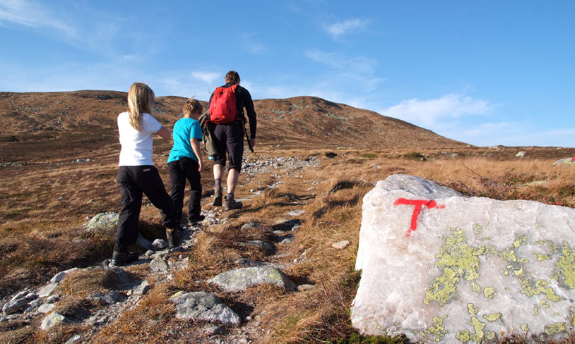 4. Hardangervidda