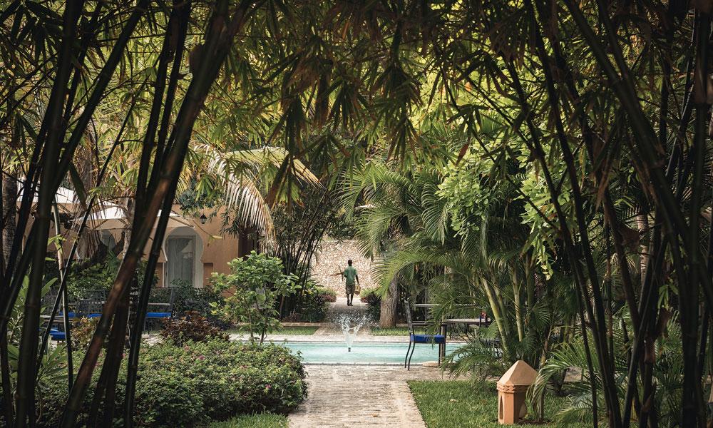 Medina Palms i Watamu