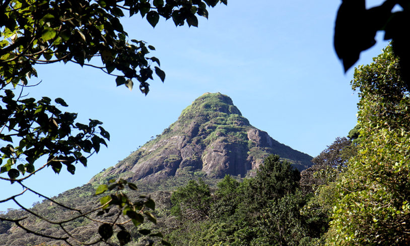 4. Hellig fjelltur