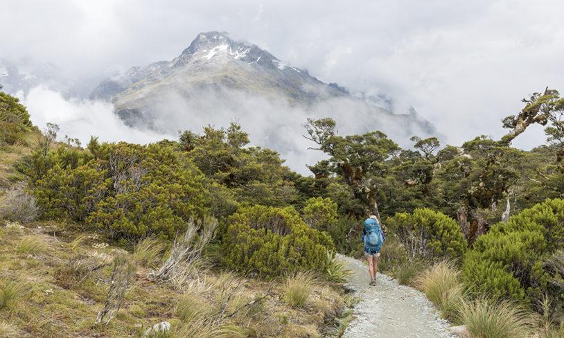 2. Sørøya, New Zealand