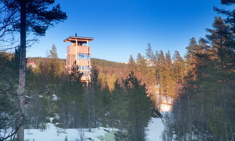 5. Elgtårn i Espedalen