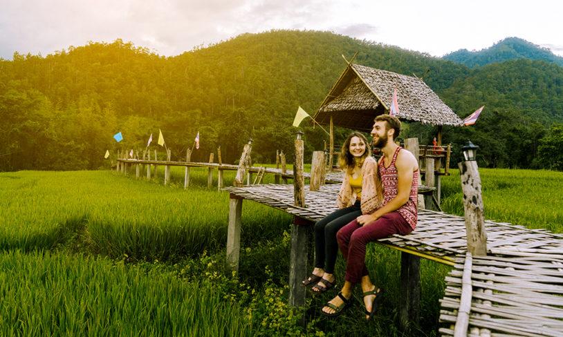 9. Sov blant økologiske rismarker