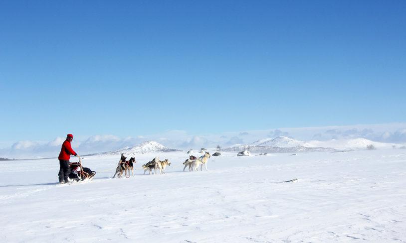 10 vinterlige opplevelser uten ski på beina