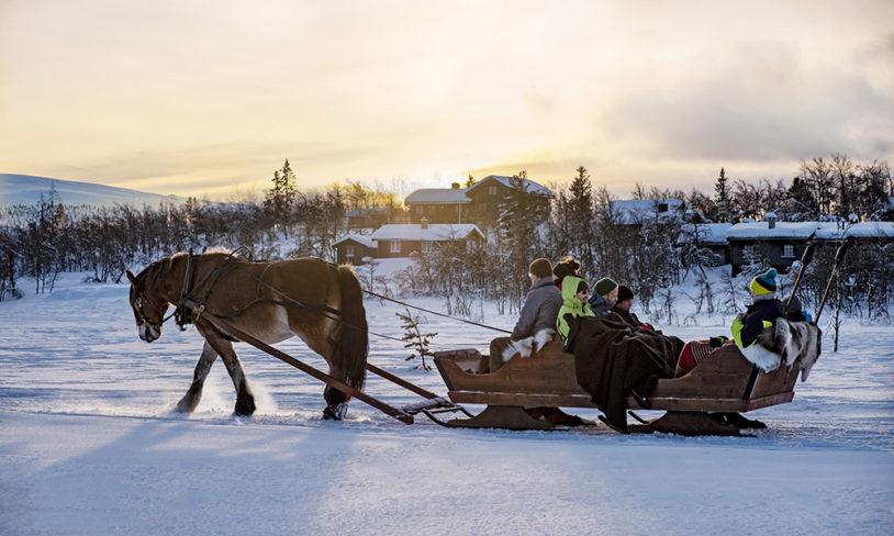 4 Hest og vogn