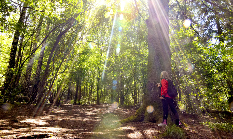 5. Skogsbading i Ekebergparken