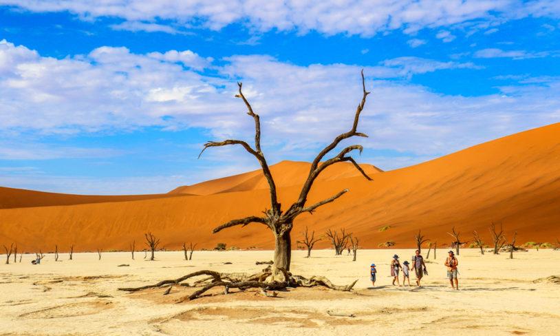 10 Ørkensafari i Namibia