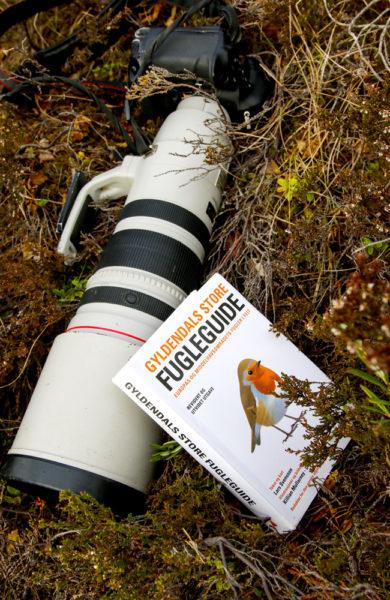 Kamera og fuglebok