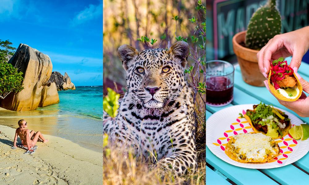 strand, leopard og taco
