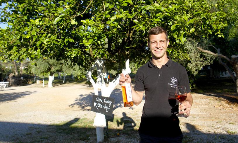 6. Vinsmaking