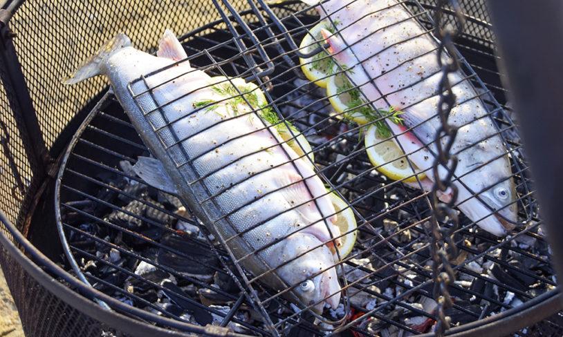 3 Selvfanget fisk med hvitløk- og persilleaioli