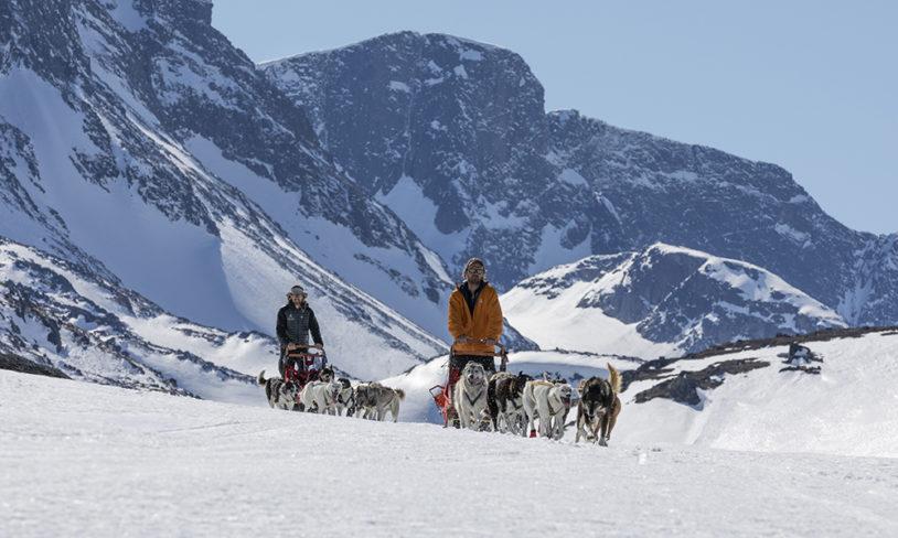 7 Hundekjøring i Jotunheimen