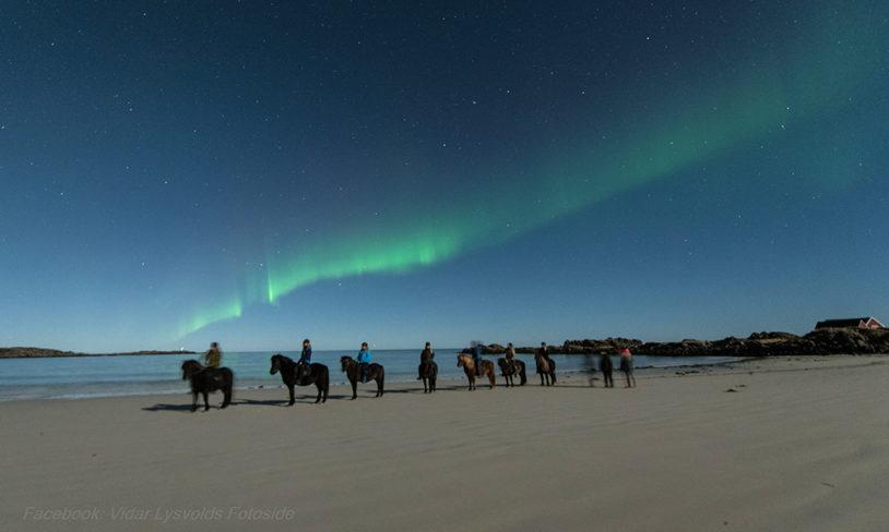 8 Nordlyssafari fra hesteryggen