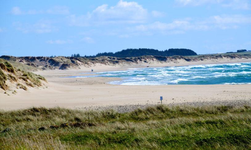 Dansk strandlykke